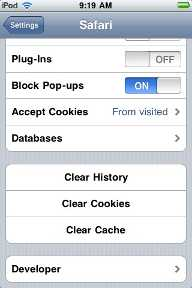Delete browser history on iPod touch - Ask About Tech